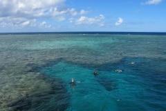 snorkeling-argincourt-reef2