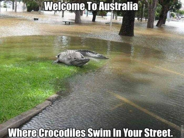 14_Reasons not going to Australia