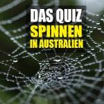 Die gefährlichsten Spinnen in Australien