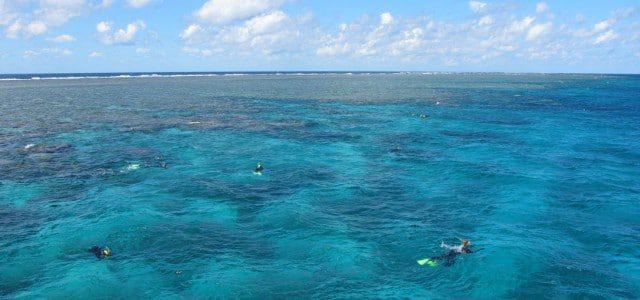 Great Barrier Reef – Alle Infos auf einen Blick