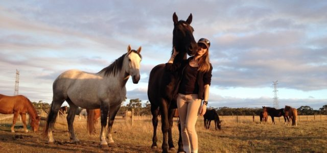 Workaway in Australien: Eine therapeutische Reitfarm in Australien
