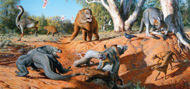 Tiere in Australien: Giganten der Urzeit