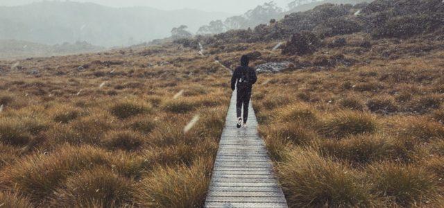 cradle mountain route