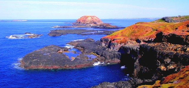 Phillip Island, die Pinguininsel