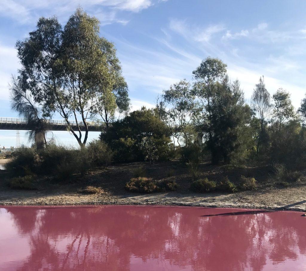 melbourne sehenswürdigkeiten pink lake